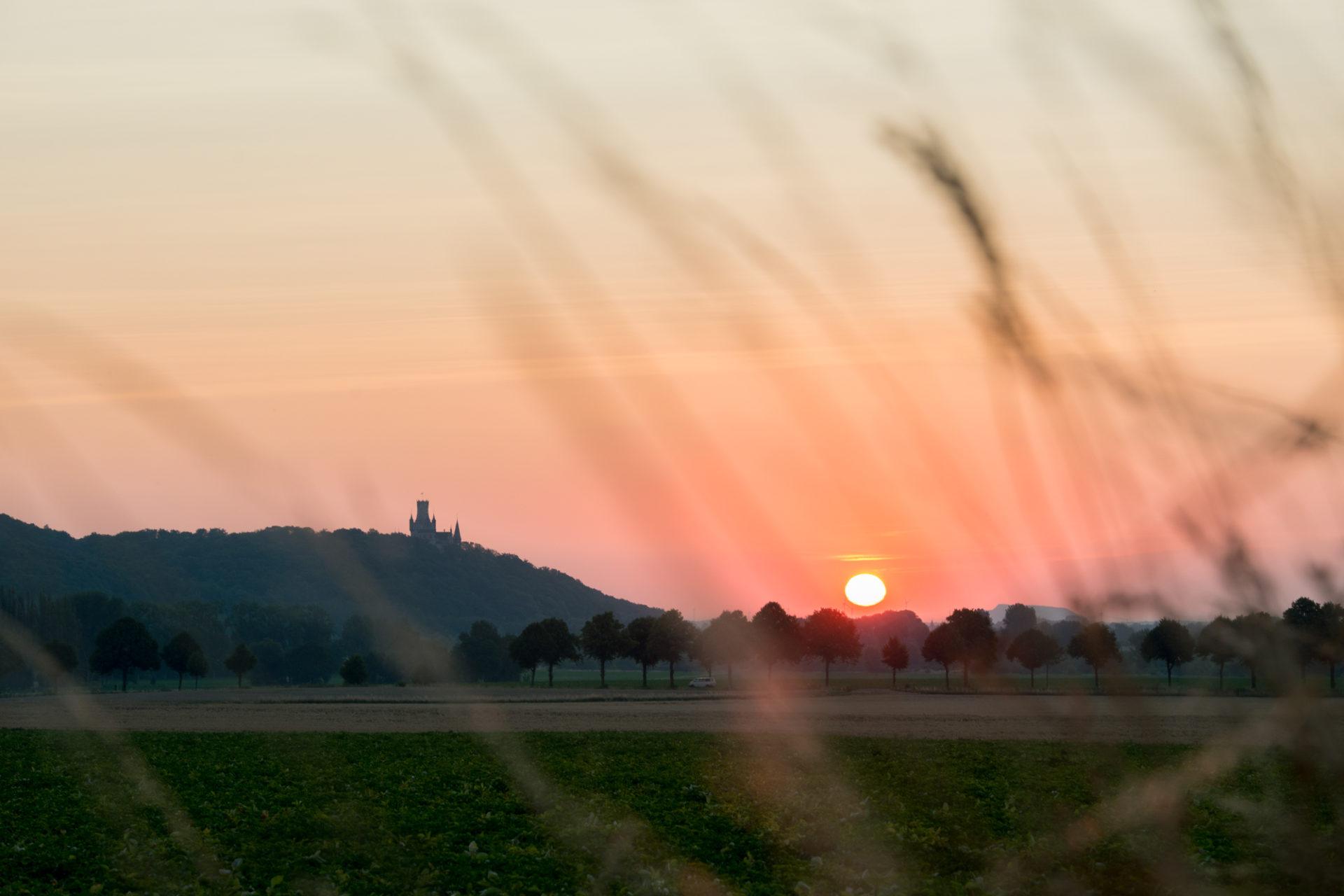 Schloss Kultur - Liederabend: Liebe - Frühling - Abschied
